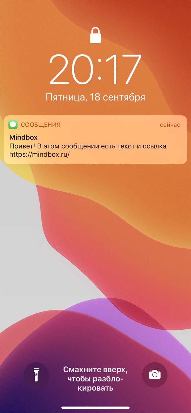 Внешний вид SMS